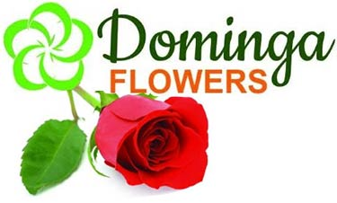 DOMINGA'S FLOWERS