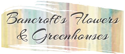 Bancroft's Flowers & Greenhouses