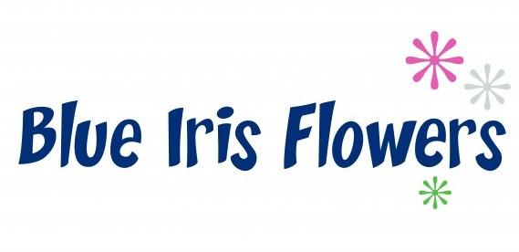 BLUE IRIS FLOWERS