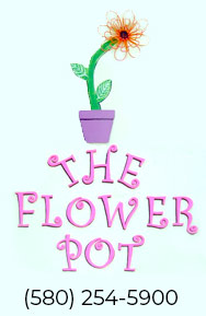 The Flower Pot
