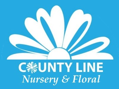 COUNTY LINE FLORAL