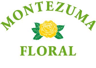Montezuma Floral