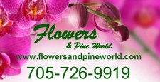 FLOWERS AND PINEWORLD