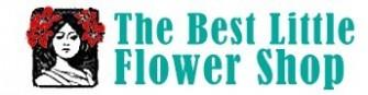 THE BEST LITTLE FLOWER SHOP