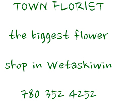 TOWN FLORIST
