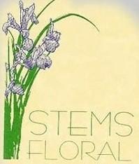 STEMS FLORAL